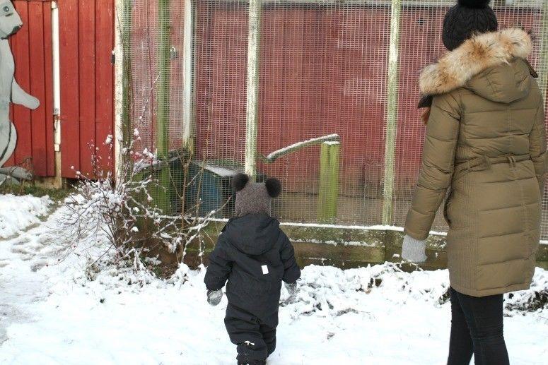 Snehygge4