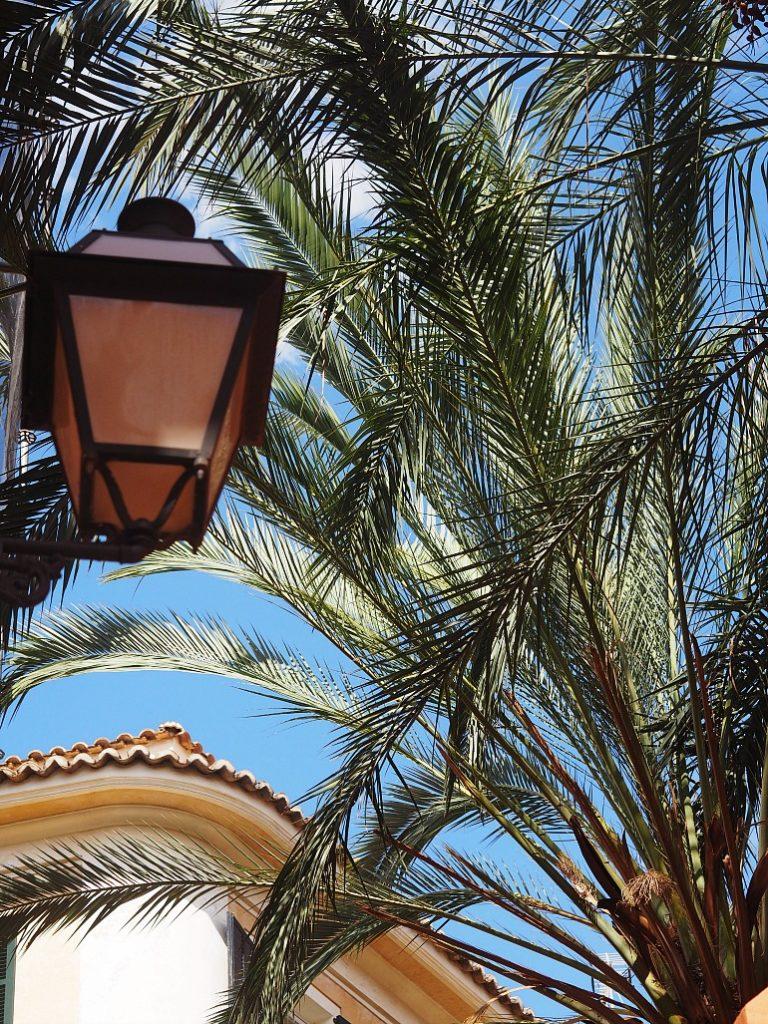 I absolut laveste gear på Mallorca 9
