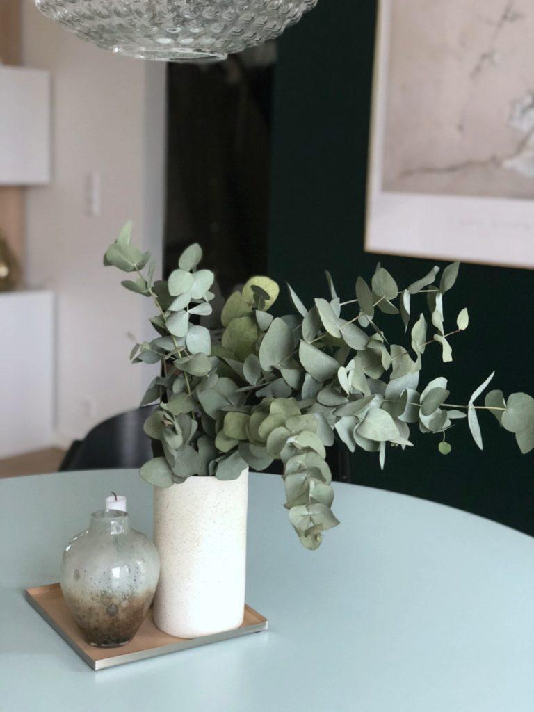 Eucalyptus grene: Til alle os, der IKKE har grønne fingre 3