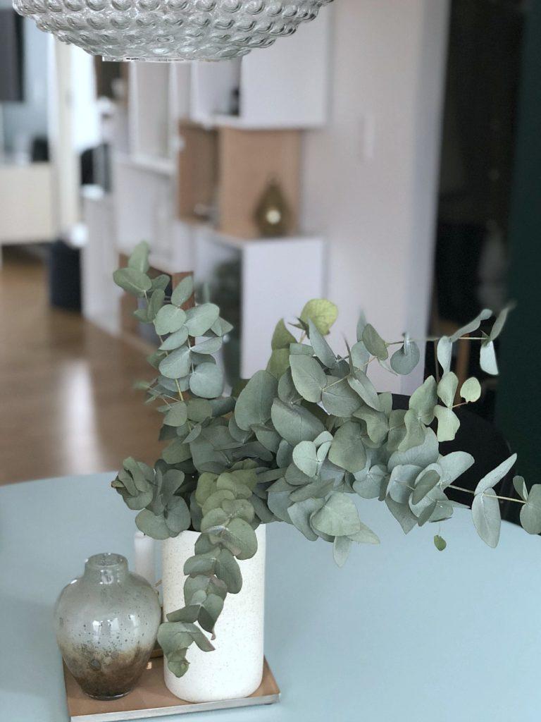 Eucalyptus grene: Til alle os, der IKKE har grønne fingre 7