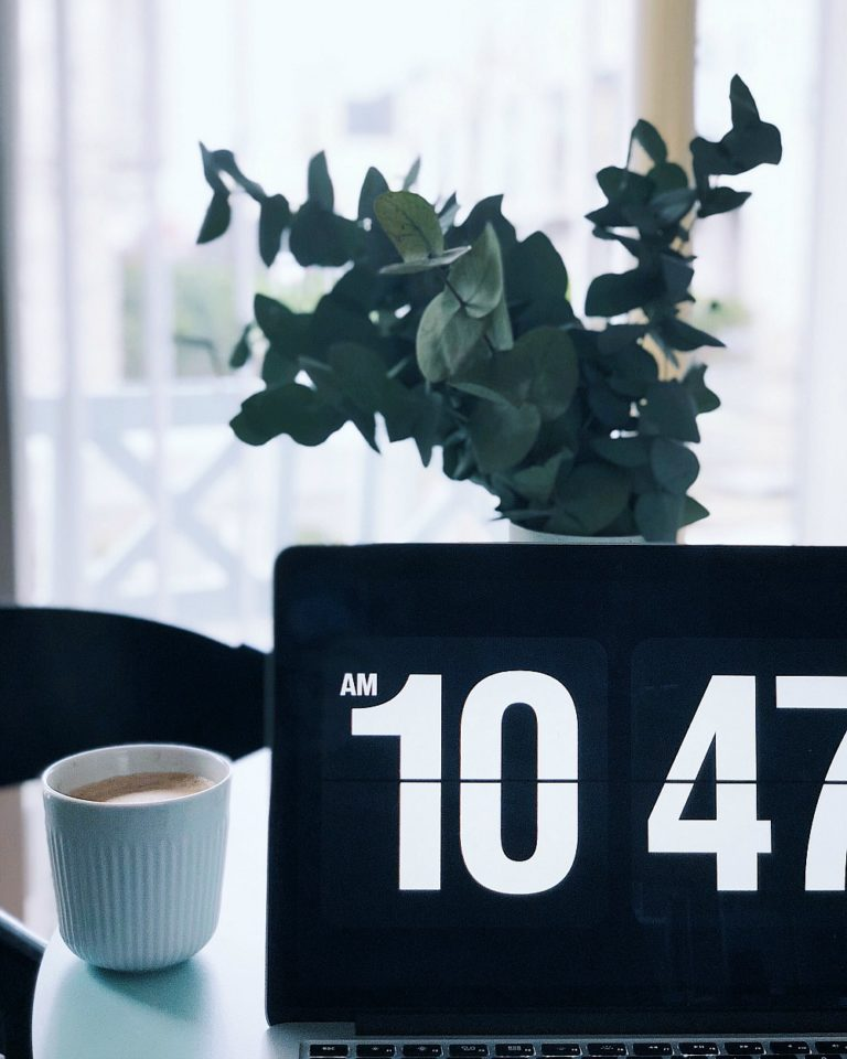 Eucalyptus grene: Til alle os, der IKKE har grønne fingre 10