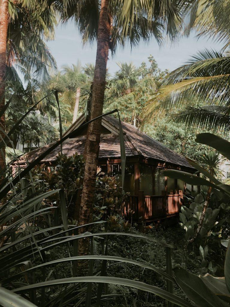 14 dage i Thailand